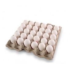 30 ביצי משק L - מעדני עופר