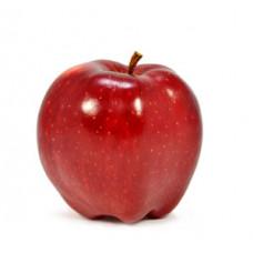 תפוח גלה - הירקניה