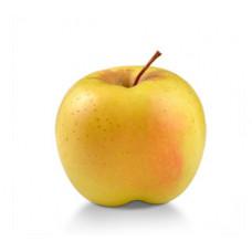 תפוח מוזהב קטן - הירקניה