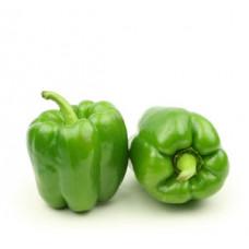 פלפל ירוק - הירקניה