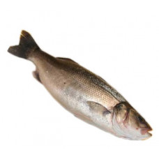 לברק - זלאיט דגים
